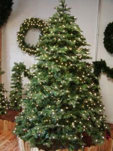 HBL-Noble-PE-Tree