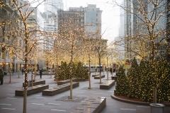 2013-christmas-in-new-york-006