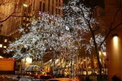 christmas-tree-in-rockefeller-center-new-york-city-3