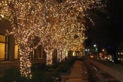 new-york-city-at-christmas-new-york-christmas-lights-new-york-new-york-lighting-l-e18e15a16c8602a8