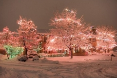 holiday-light-design-example