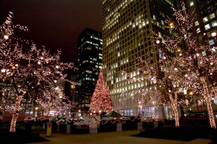our lights and decorations are the best in the business guaranteed - Chicago Christmas Decorations